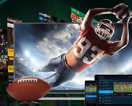 Everything you need to know about Online Sportsbooks